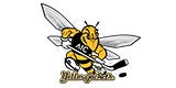 AIC Men's Hockey