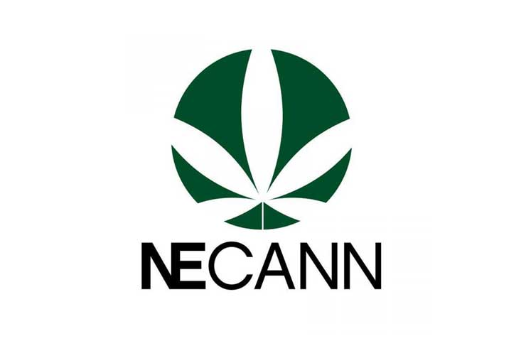 More Info for NECANN Springfield